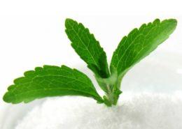 100%-ban organikus - alapanyaga a Stevia növényből készült por (semmilyen szintetikus adalékanyagot nem kevernek hozzá)